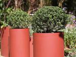"""Il progetto del finalese Ottonello al """"Gardening World Cup"""""""