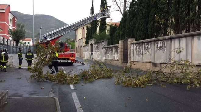 Pioggia e vento: i danni nel Savonese (2 ottobre 2015)