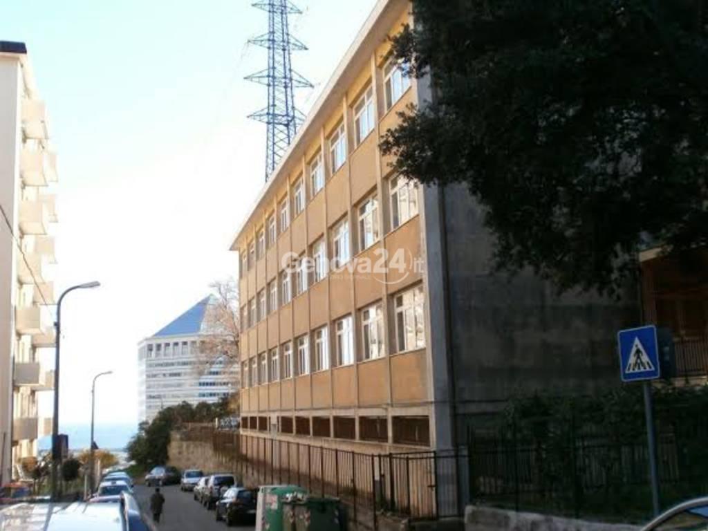 Scuola Cicala