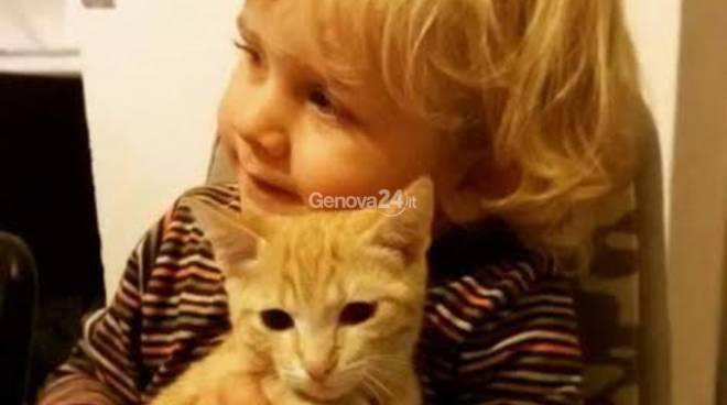 Un bambino con il suo gatto
