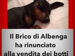 Albenga Brico No Botti