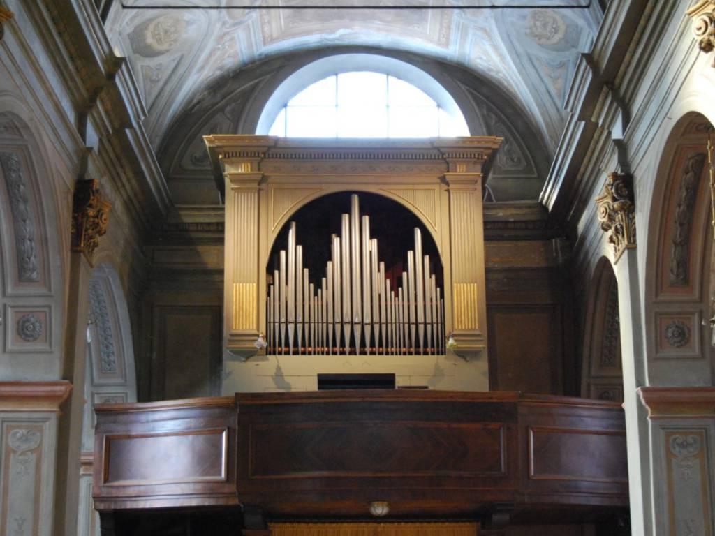 Organo Millesimo
