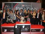 Esposizione internazionale canina 2015