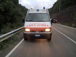"""Carcare, i primi 18 mesi di servizio di """"Ambulanze Veterinarie Italia"""""""