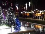 Si accende l'albero di Natale di Loano