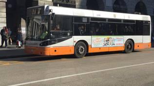 Bus 39 amt