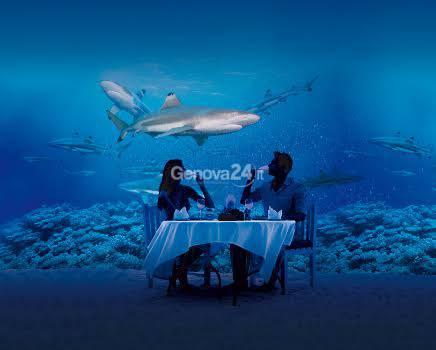 Cena all'Acquario di Genova