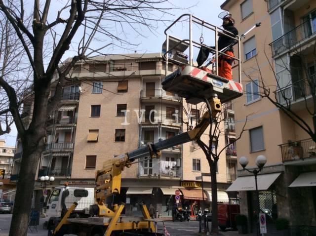 Albenga, proseguono gli interventi di potatura in via Piave