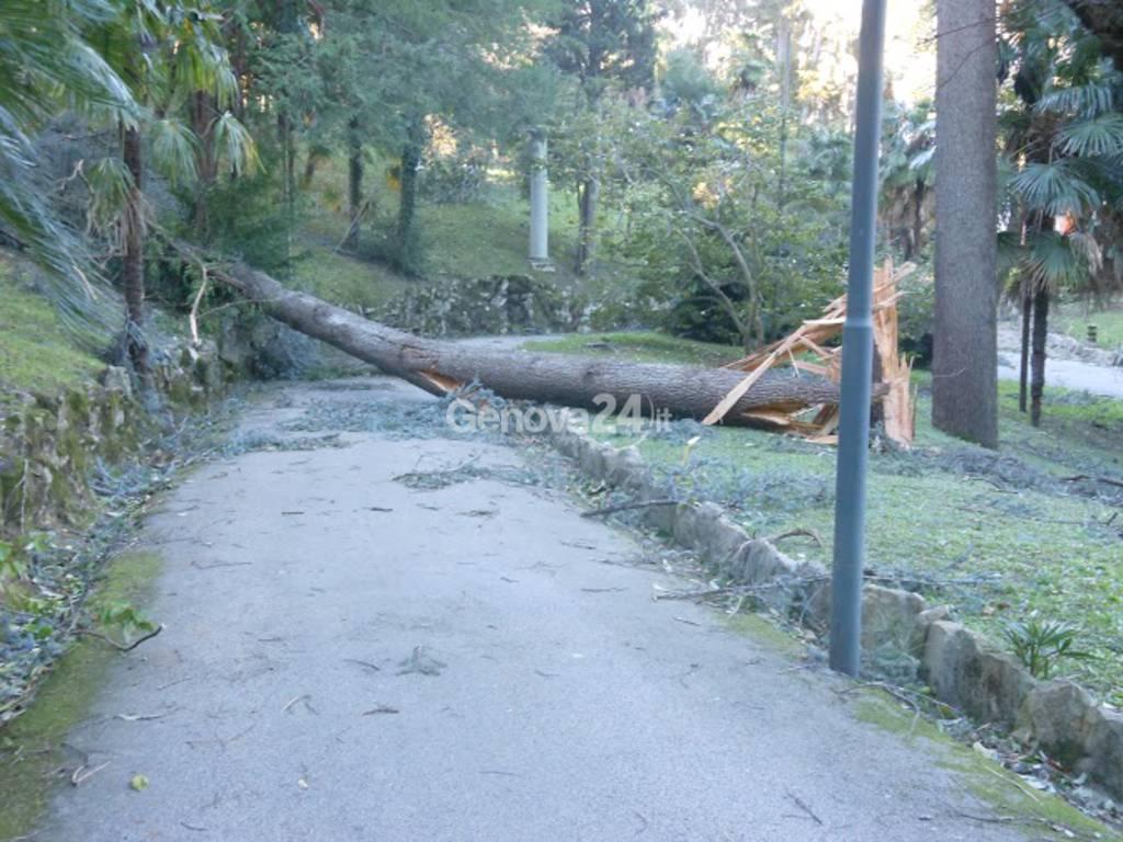 Gravi danni a Villa Durazzo per il vento