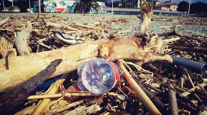 legname albissola marina