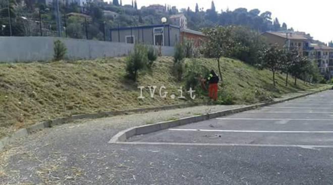 Alassio, pulizia nei pressi del campetto di Loreto