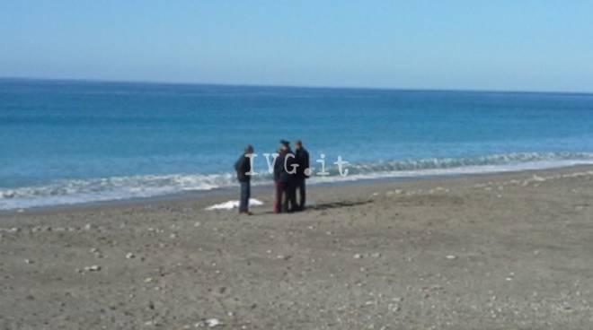 cadavere spiaggia