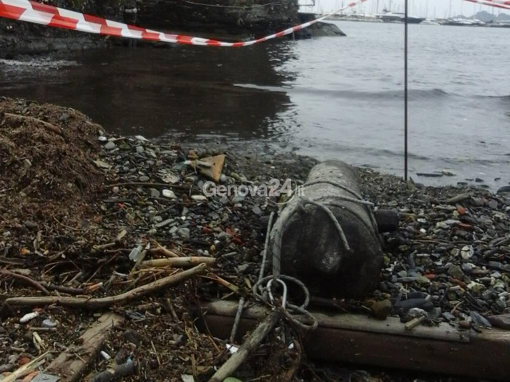 Cannone, pesce d'aprile a Rapallo