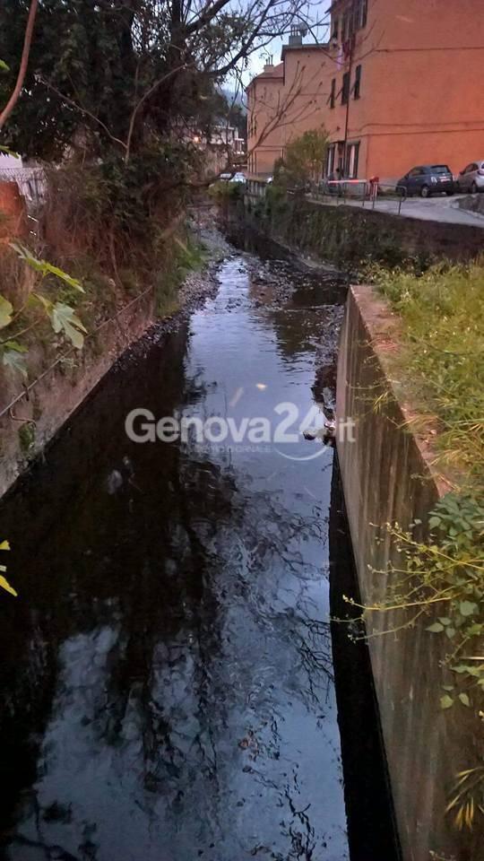 Fegino, sversamento di petrolio nel torrente che si immette nel Polcevera: è allarme inquinamento