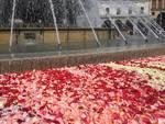 Petali nella fontana contro la violenza sulle donne