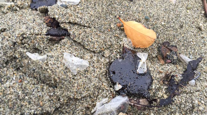 petrolio iplom fornaci spiaggia savona