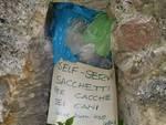 self service cacca cani castelletto