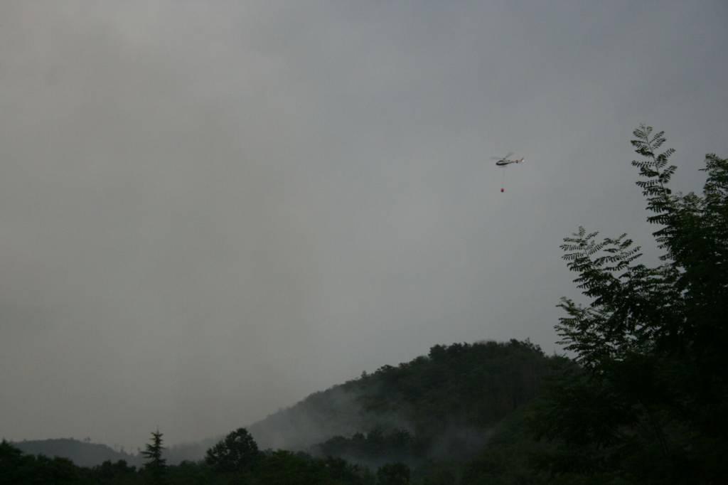 Incendio boschivo a Bragno