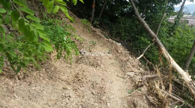 Strada abusiva in via Pino di murta