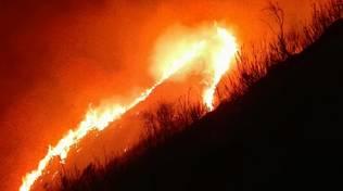 Incendi boschivi a Davagna e Bogliasco