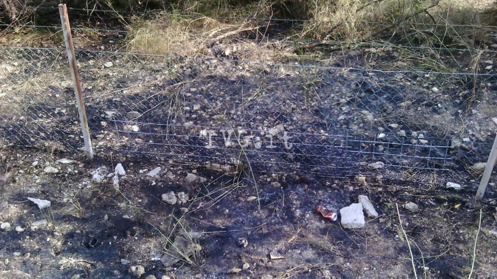 Incendio a pochi passi dall'autostrada a Spotorno
