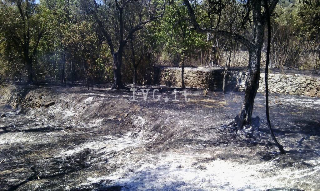 Incendio di sterpaglie a Loano