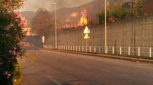 Incendio di sterpaglie in via Ciocchi a Vado Ligure