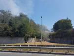 Vado, incendio vicino alla Vada Sabatia