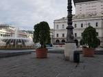 Alberi in piazza De Ferrari per il Congresso Eucaristico