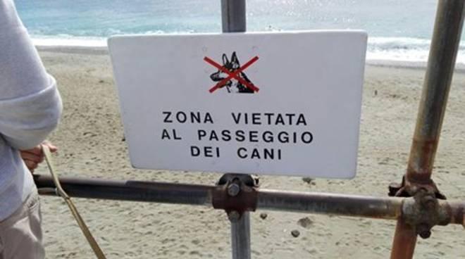 divieto cane spiaggia