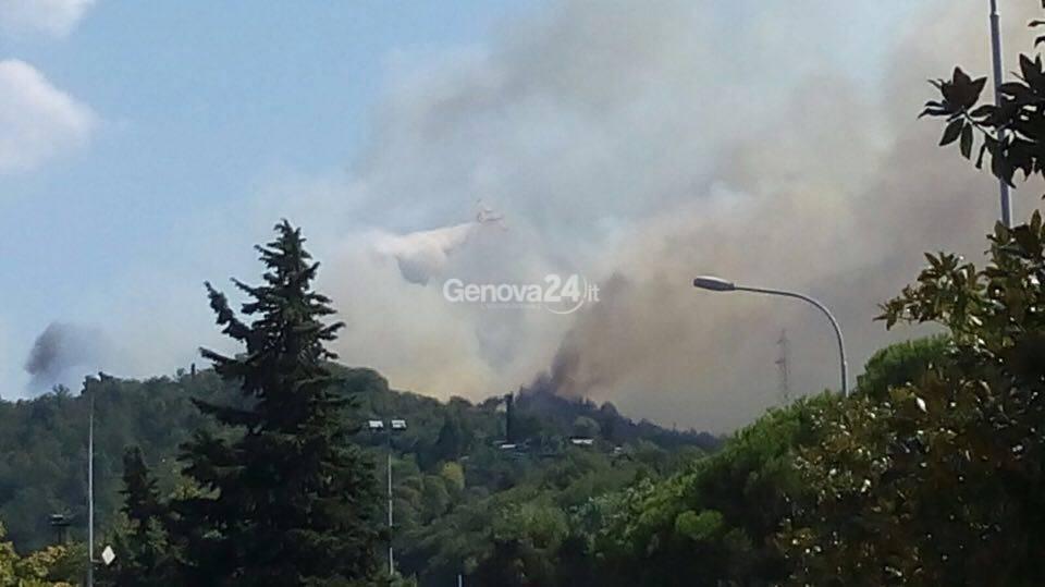 Incendio nei boschi di Novano a Casarza Ligure