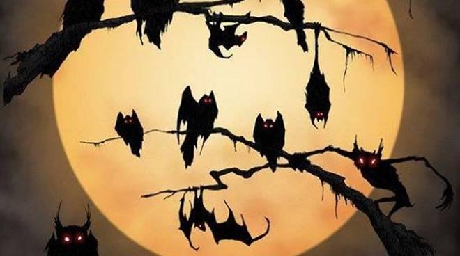 Halloween Ceriale