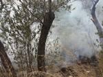 incendio località poggio laigueglia