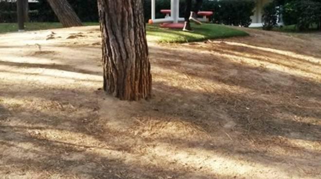 passeggiata ciccione