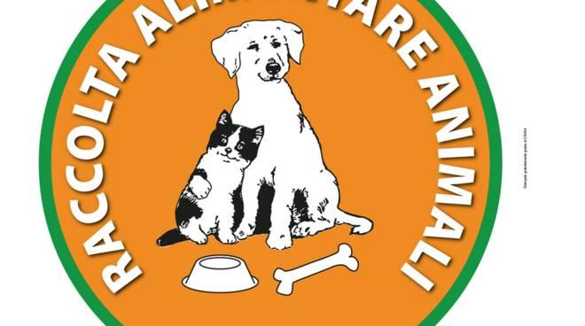 raccolta nazionale per animali