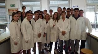 studenti shampoo rosmarino