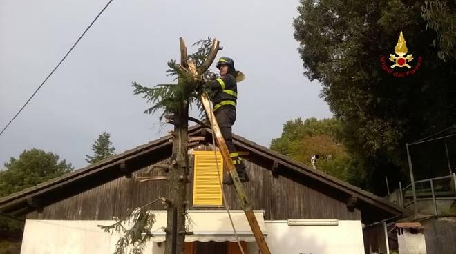 Volo, interventi e addestramento: la lunga giornata dei vigili del fuoco fotogallery