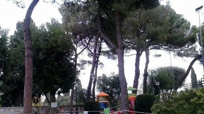 alberi alassio