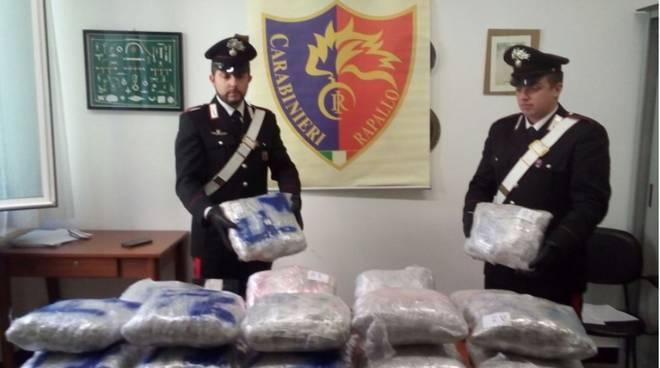 Carabinieri Rapallo droga