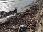 detriti spiaggia