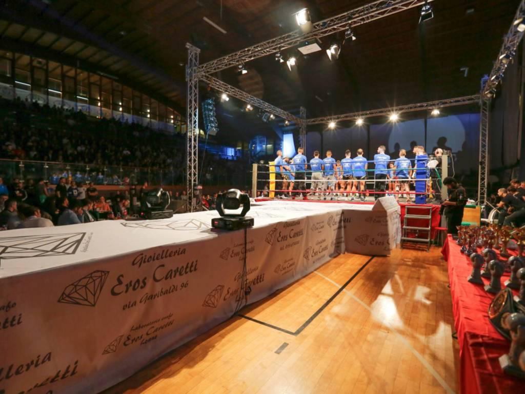International Fight Show