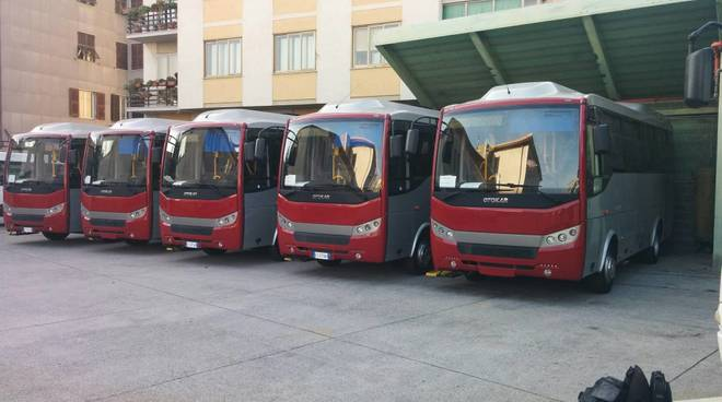 nuovi bus Tpl