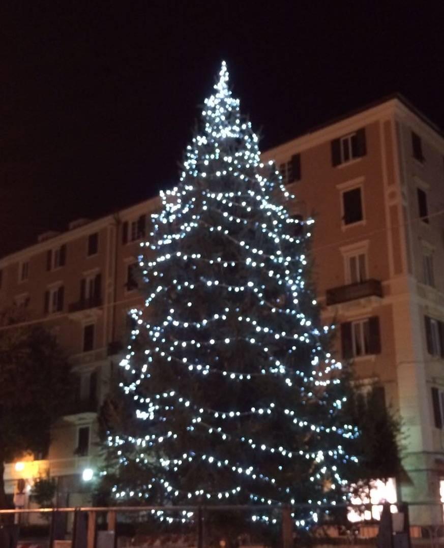È arrivato l'albero di Natale in piazza De Ferrari