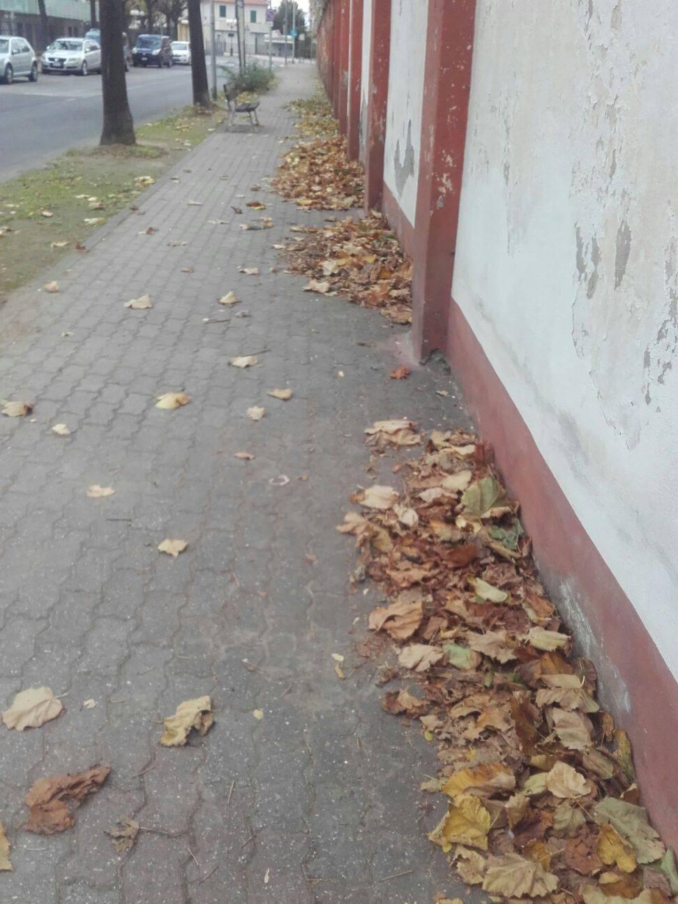 """Albenga, la protesta dei residenti: """"Via Piave abbandonata a sé stessa"""""""