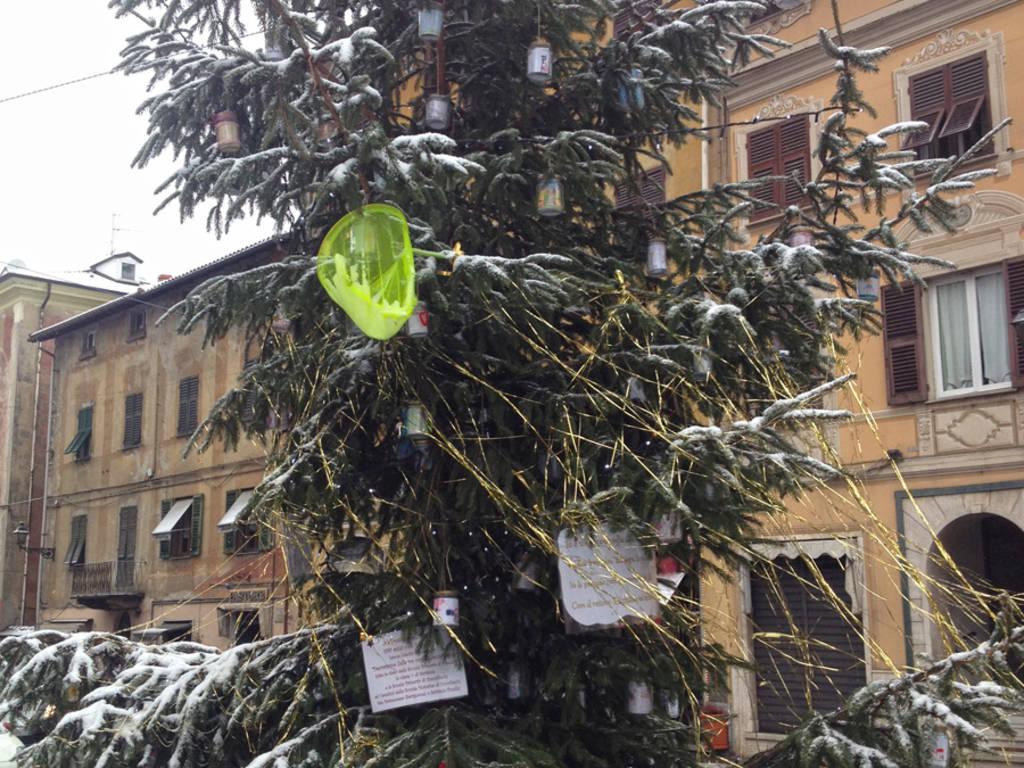 albero busalla