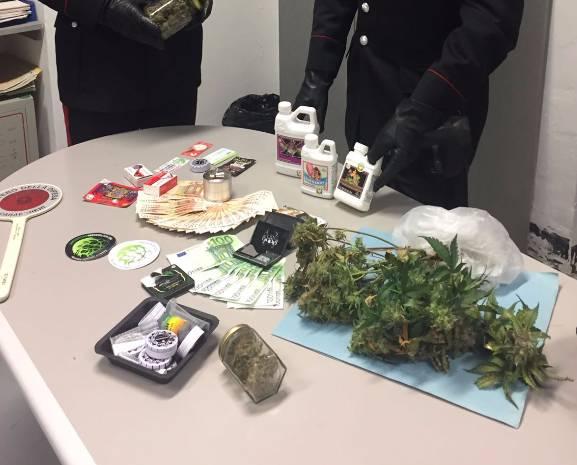 Coltivazione e spaccio di marijuana a Rapallo