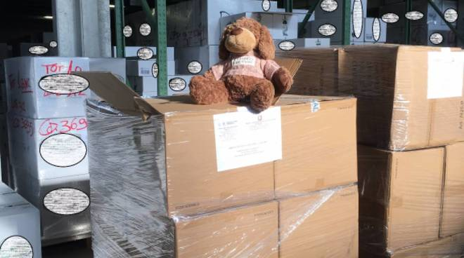 Sequestrati 2616 peluche,