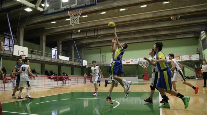 basket Under