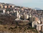 Cinghiali metropolitani ad Oregina