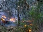 Incendio Boschivo Vendone